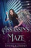 Assassin's Maze: Assassin's Magic 4