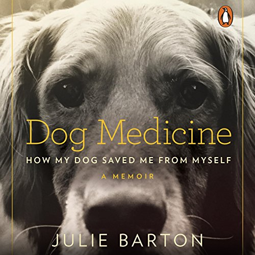 Dog Medicine audiobook cover art
