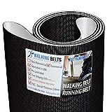 WALKINGBELTS Walking Belts LLC - TechnoGym Run Now 700 DAKxxx Treadmill Walking Belt 2ply + Free 1oz Lube