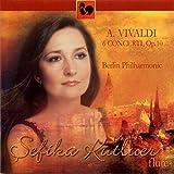 Flute Concerto in D Major, Op. 10, No. 3, \