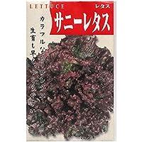 サニーレタス 在来種固定種野菜のタネ