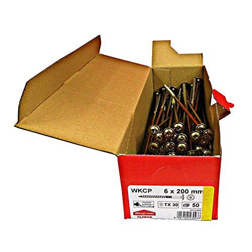 Tellerkopfschrauben Holzbauschrauben alle Größen Tellerkopf Torx Schrauben (50Stück 6x200mm TX30)