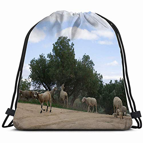 Sheep Olive Tree Animals Wildlife Animal Parks Outdoor Drawstring Backpack Sports Gym Bag for Women Men Children Large Size with Zipper and Water Bottle Mesh Pockets