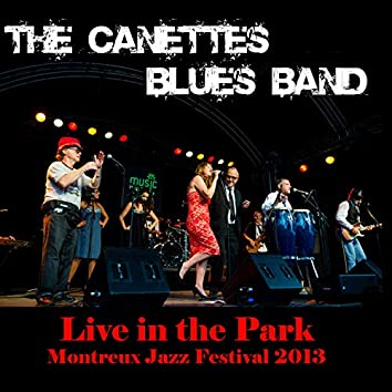 Montreux Jazz Festival 2013 (Live in the Park)