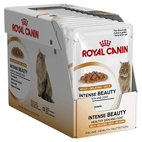 ROYAL CANIN Feline Portionsbeutel Multipack Intense Beauty in Gelee 12x85g, 1er Pack (1 x 1.02 kg)