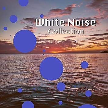 # 1 Album: White Noise Collection