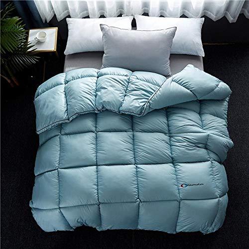 Hahaemall Bedsure Daunendecke Winter Warm Duvet Insert Classic Quilt Hypoallergen 100{afabdb88d627690f48456c6123bdf0e66e19acd3e52ff3feaad3766f8ca41820} Baumwolle Shell Down Proof-Grün_220X240-3000G