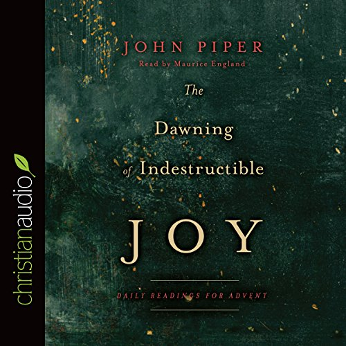 The Dawning of Indestructible Joy cover art