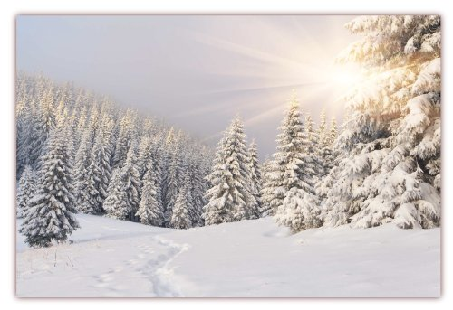 XXL Poster 100 x 70cm (F-220) Tiefverschneite Winterlandschaft mit Bäumen welche unter der Schneelast ächzen, die Sonne strahlt vom Himmel (Lieferung gerollt!)