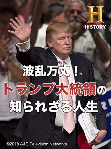 波乱万丈!トランプ大統領の知られざる人生(字幕版)