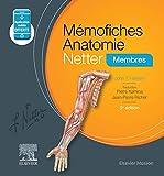 Mémofiches Anatomie Netter - Membres - Elsevier Masson - 08/07/2020
