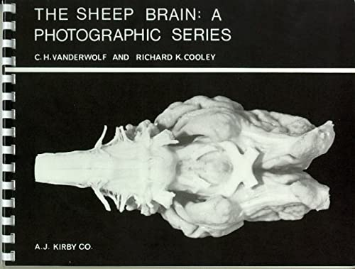 The Sheep Brain: A Photographic Series