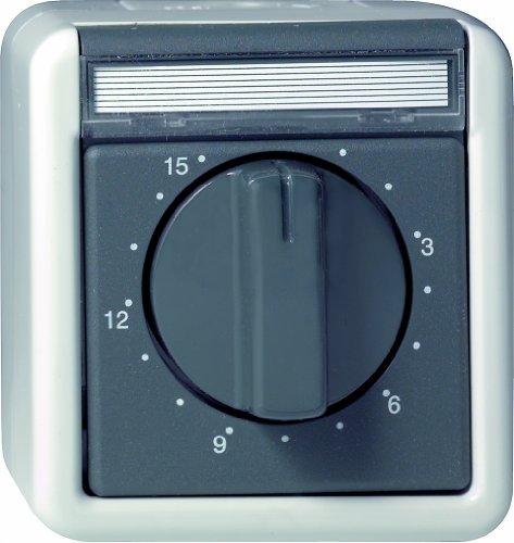 Gira 032030 Zeitschalter 15 Minuten Wassergeschützt Aufputz, grau