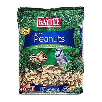 Kaytee Wild Birds Food Supplies