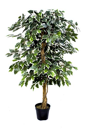 GreenBrokers Árbol de ficus Artificial, 120 cm