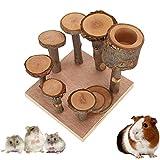 MYSY Escalera Madera Hamster, Juegos de jerbos de Conejillo de Indias,...