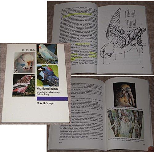 Vogelkrankheiten-: Ursachen. Erkennung. Behandlung von Hahn. Dr. Ute (1992) Taschenbuch