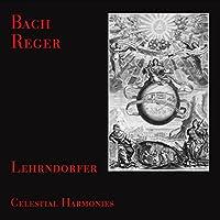 Bach, J.S./Reger: Organ Music