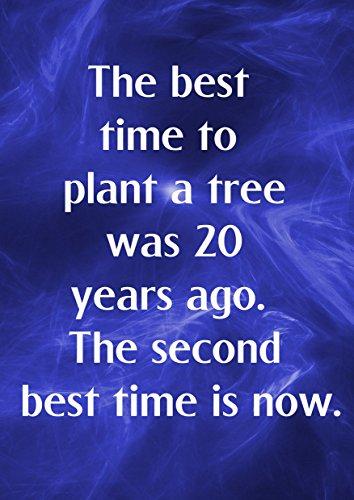 3 De beste tijd om een boom te planten was 20 jaar geleden. De tweede Beste Tijd Is Nu Motivationele Inspirationele Liefde Leven Quote Woorden Believe Bepaling Beste Kleur Foto Foto Unieke Print A4 Muurposter