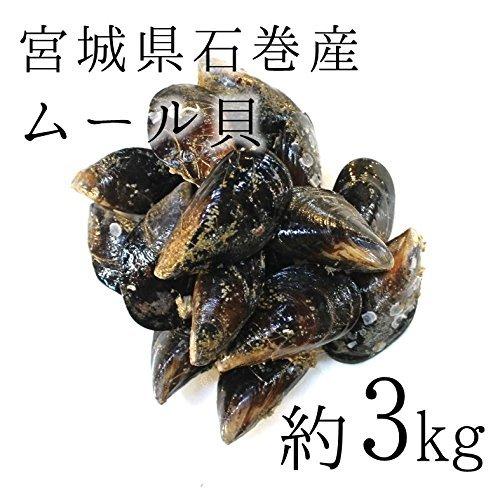 ムール貝(活け・生) 大サイズ 石巻宮城産 約3kg(築地直送)他 鮮魚【ムール貝3K】