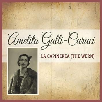 La Capinerea (The Wern)