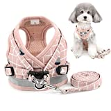 Zunea No Pull Small Dog Harness and Leash Set Adjustable Reflective Step-in Chihuahua Vest Harnesses Mesh Padded Plaid Escape Proof Walking Puppy Jacket for Boy Girl Pet Dogs Cats Pink L