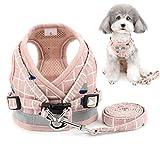 Zunea Arnés perro pequeño con Correa, ajustable reflectante chihuahua chaleco arneses de malla acolchada a prueba de escape chaqueta para cachorro para niños y niñas perros y gatos rosa XL