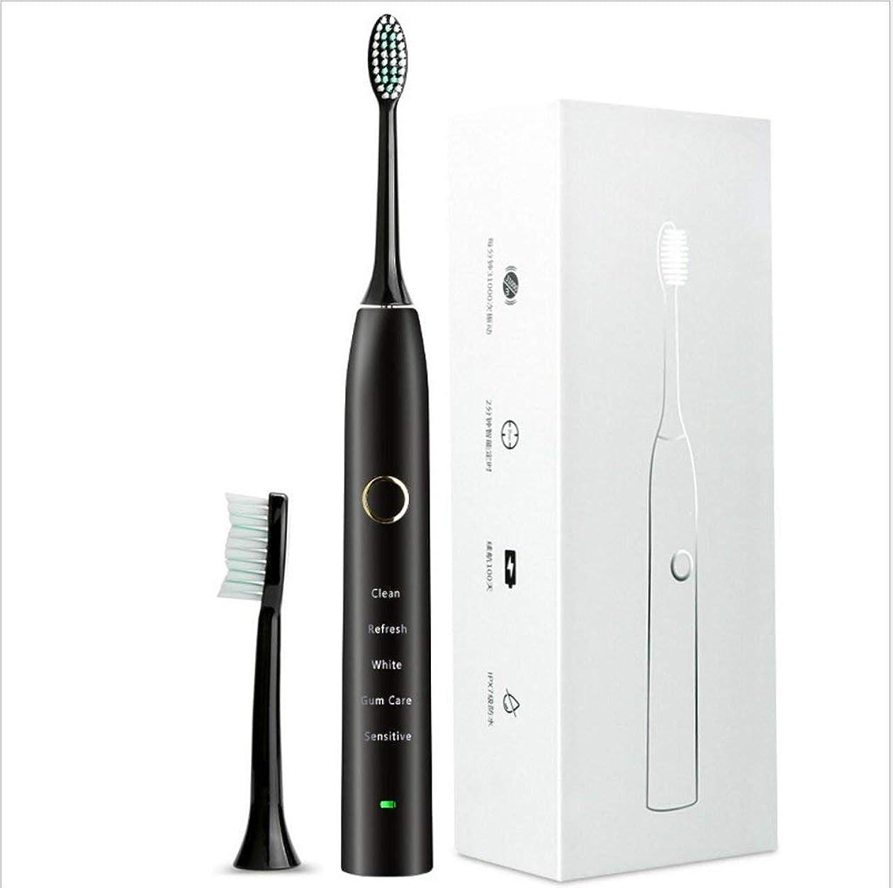 代理人実施する宣言する電動歯ブラシUSB充電100日間持続1回使用防水完全洗浄可能5オプションモード2交換ヘッド