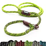 Friends Forever Extremely Durable Dog Slip Rope Leash Premium Quality...