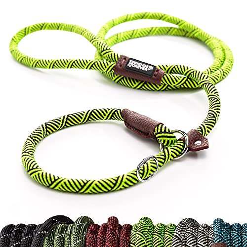 Friends Forever Extremely Durable Dog Slip Rope Leash Premium Quality Mountain Climbing Lead Strong Sturdy Support Pull for Large and Medium Sized Pet 6 feet Green (AA306)