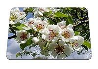 26cmx21cm マウスパッド (花咲く枝春) パターンカスタムの マウスパッド