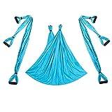 Hamaca de Techo de Yoga aérea antigravedad de 6 Asas, Columpio Volador, Trapecio, Dispositivo de inversión de Yoga, cinturón Colgante para Gimnasio en casa