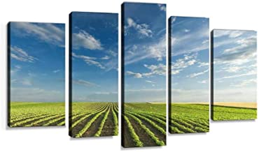 Young soybean crops at idyllic sunny day Modern Art Painting set Digital Print Picture on Canvas Framed Artwork Wall Decor Living Room Office Bedroom 5 Pieces