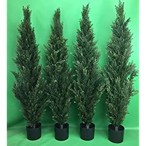 Four 4 Foot Artificial Topiary Cedar Trees Potted 48″ Indoor Outdoor Plants by Silk Tree Warehouse Company Inc