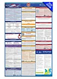 NY Labor Law Poster, 2020 Edition - State, Federal and OSHA Compliant Laminated Poster (New York, English)