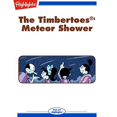 The Timbertoes: Meteor Shower copertina