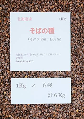 そばの種 栽培用 北海道産 転用品 6Kg【300坪用】