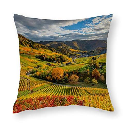 Germany_Autumn_Vineyard_Clouds_Hill - Funda de almohada decorativa de microfibra suave, 45 x 45 cm