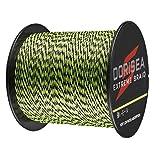 Dorisea, Extreme Braid - Lenza da Pesca Intrecciata in 100% polietilene, Lunghezza 300 m, Testata da 2,7 a 250 kg, Resistente all'abrasione, Alta qualità, Zero qualità