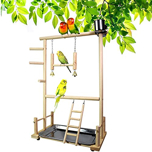 Holzsammlung Supporto da Gioco in Legno per Uccelli Pappagallo/Parco Giochi/Palestra/Set di Giocattoli, con Posatoi, Scale, Altalena, per Eclectus Ara