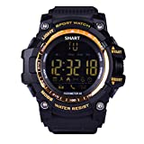 Sumtech EX16 Sports Smart Watch for Men Bluetooth Smartwatch 5ATM IP67 Waterproof with Pedometer/Calories/Distance Counting/Camera Remote Control (Gold)