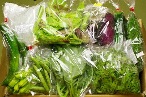 無肥料・無農薬栽培の野菜・果物(野菜の少ない時期は加工品も)のセット(3回分) (火曜日(隔週3回発送))