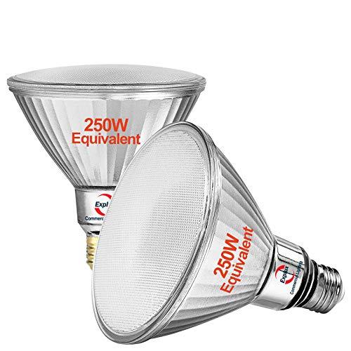 Explux Outdoor PAR38 LED Flood Light Bulbs, 250W Equivalent, 2800 Lumen, Full Glass Weatherproof & Anti-Ageing, Dimmable, 5000K Daylight, 2-Pack