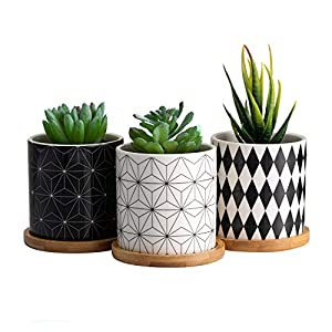 Dsben 3.2 Inch Succulent Plant Pots, Small Modern Flower Ceramic Planter Indoor with Bamboo Tray for Cactus, Herbs, Home, Set of 3 (Plants Not Included)