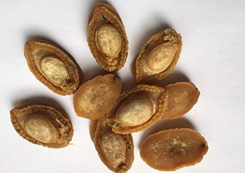 Getrocknete Meeresfrüchte großformatiges Abalone 1 Pfund (454 gramm) aus South China Sea nanhai