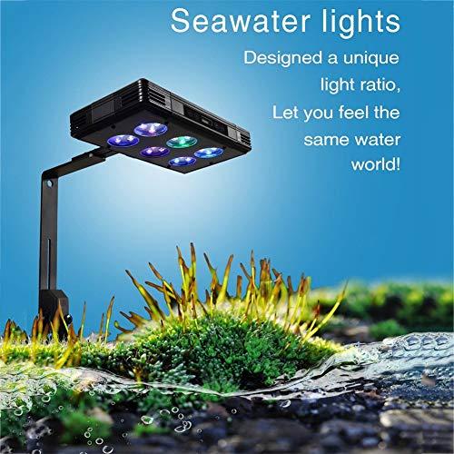 ZWHLDJ Aquarium Beleuchtung Fish Tank Light Süßwassermeerwasser Bio-Koralle Licht LED-Licht Vollspektrum Aquarienleuchten Pflanzenbeleuchtung Geeignet Für Aquatische Riffpflanzen Und Fischzucht
