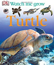 Watch Me Grow: Turtle Book for Children
