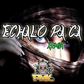 Echalo Pa Ca (Remix)