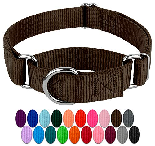 Country Brook Petz Hundehalsband, Martingale, Nylon, robust, 21 Farben (2,5 cm breit, mittel)