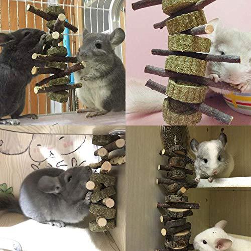 KOBWA Apple Sticks Pet Snacks Kauen Spielzeug, natürliche lustige Gras Behandlung Ball Haustier Katze Essbare Spielzeug Molaren für Kaninchen, Chinchillas, Hamster, Meerschweinchen - 2